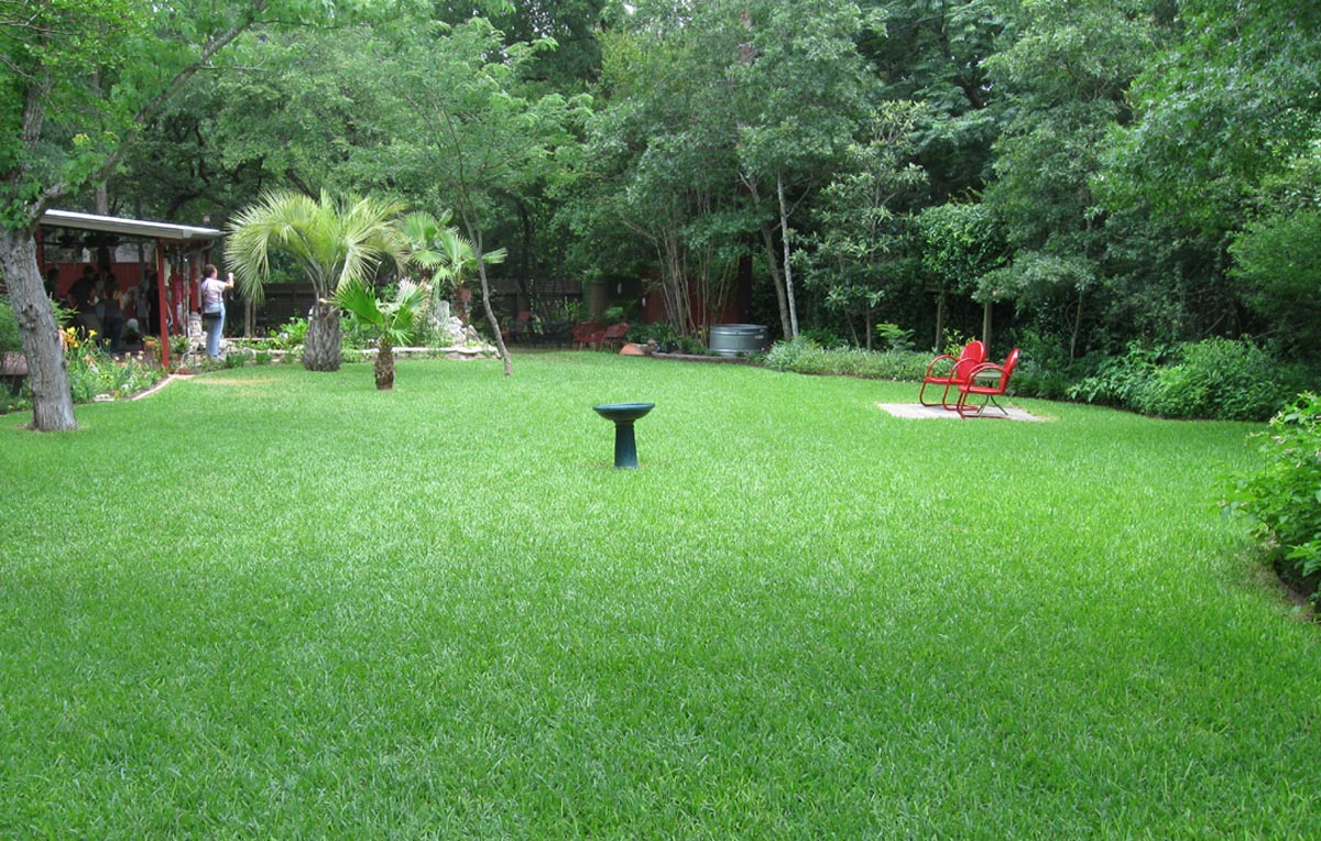 Landscape and hardscape design for queen anne 39 s and anne for Lawn and landscape